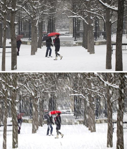 neige_L