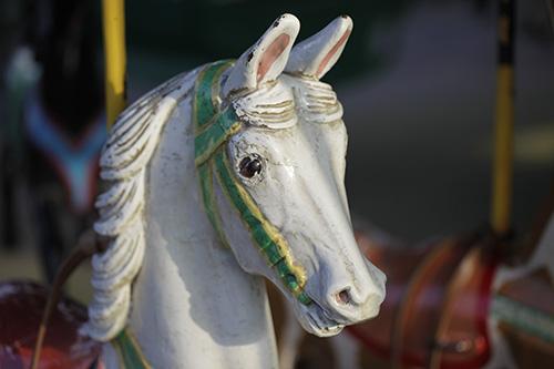 cheval_Luco_pour_CR