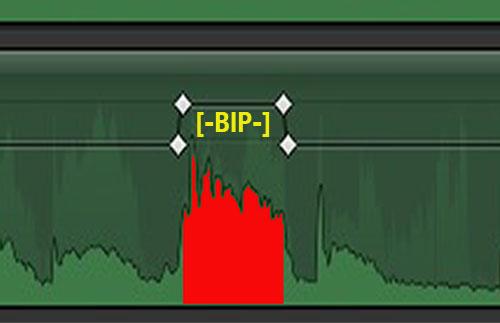 bipPropagande2