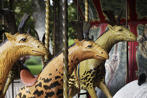 manege_museum_animaux_A