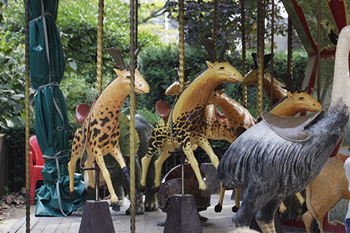 manege_museum_animaux_D