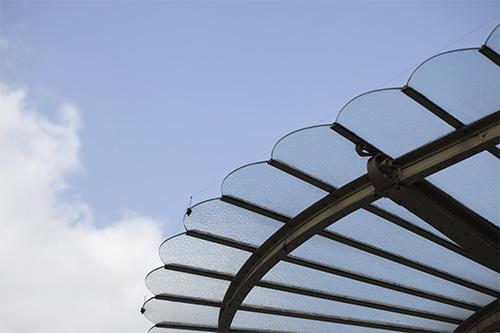 Orsay-verriere-libellule