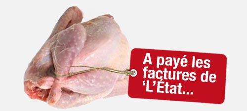 poule_caput_tuee