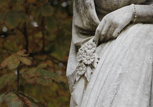 Reines_autumn_C