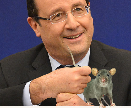 Hollande_souris_A