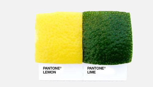 pantone_18