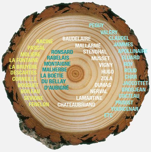 arbre_lignes_litterature