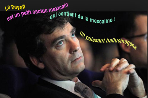 Montebourg_drogue_A